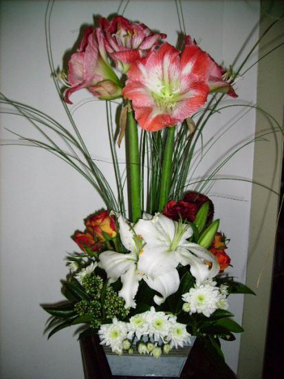 Art floral photos des compositions florales amaryllis for Amaryllis de noel